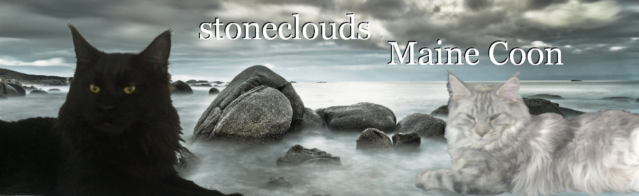 -   Links - stoneclouds.at